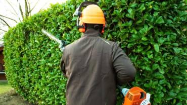 Gartenarbeiten- & pflege